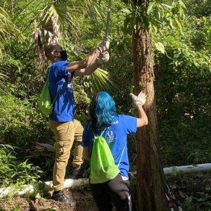 Volunteers Helping to trim the trees near the Gore Nature Education Center   Cypress Cove Landkeepers