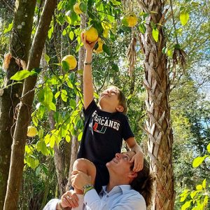 Child Reaching for a grapefruit with the help of his father: Gore Nature Education Center Gallery | Cypress Cove Landkeepers