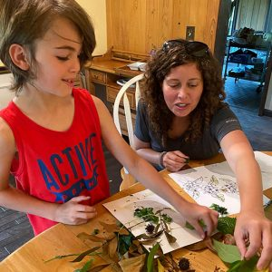 Plant Identification Session : Gore Nature Education Center Gallery | Cypress Cove Landkeepers