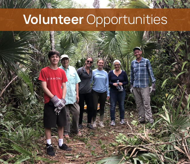 Volunteer Opportunities at Cypress Cove Landkeepers | Protecting Florida's Natural Treasures